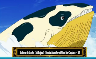 MilkWhale.png