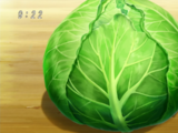 Enamel Cabbage
