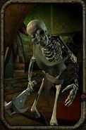 Skeleton102018