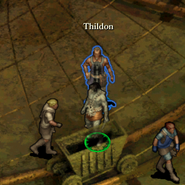 Thildon