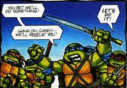 Turtles - Ralston Purina