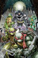BatmanTMNT-vol-01-cov1