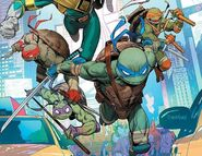 Ninja Turtles MMPR-TMNT
