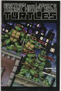 Teenage Mutant Ninja Turtles 01 remake