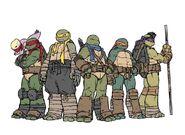 IDW five-turtles