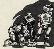NinjaTurtles-RoadHogs