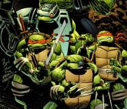 Image turtles