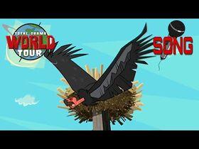 Condor_-_Total_Drama_World_Tour_Song