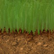 Texture Grass64-2