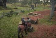 Arizona escaping Braithwaite Manor with the horse