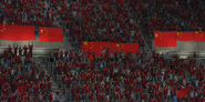 Chinese soccer fans