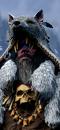 Nor cha shaman sorcerer campaign 01 0.png