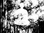 Seiko Imprint