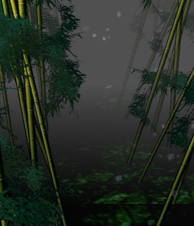 Bosque de Bambú del Perdido
