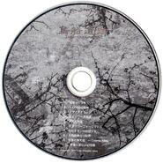600px-鸟船遗迹disc