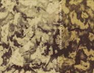 1155px-梦违科学世纪cover3