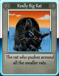 Really Big Rat.png