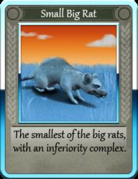 Small Big Rat.png