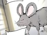 Hidden Floor Giant Rats