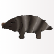 Striped Ground Pig-Profile.png
