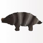 Striped Ground Pig-Profile