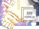 Burning Jay