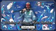 Training of Former Water Hashira