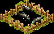 Badger farm.png