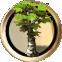 Plant tree.png