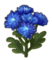 Chrysanthemum.png