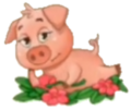 Flirty Pig