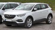Opel Grandland X IMG 0382 (colour corrected)