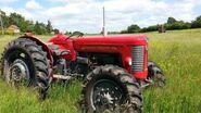 Massey Ferguson 65 tractors