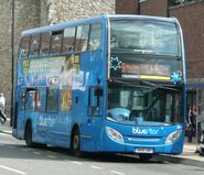 Bluestar 858