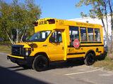 List of school bus manufacturers