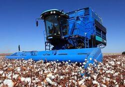 Montana (Brazil) 2826 cotton picker - 2012.jpg