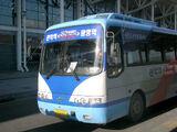 Hyundai Aero Town