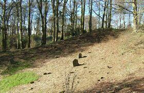The New Lanark Graveyard