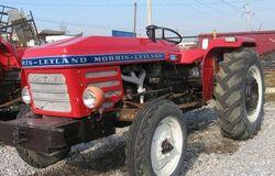 Morris-Leyland 184 - 1982.jpg