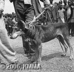 Rwanda001Y 20180620.jpg