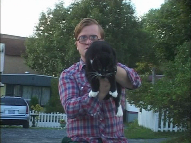 Bubbles' Kitties