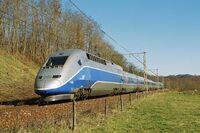 TGV POS.jpg