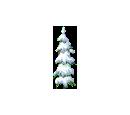 Thin Snowy Tree