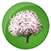 Logo Spring.png