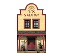 Mini Saloon