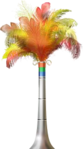 Carnival Feathers.png