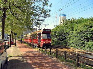 RijnstraatLijn10.jpg