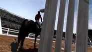 """""""Rider Meet Horse, Horse Meet Rider"""