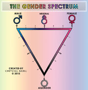The gender spectrum scale by chrystall bawll-d9d0eiu