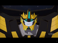 Ultra Bee's face